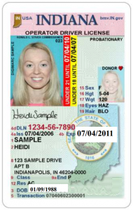 Some forms of identity are easily forged; Drivers license, Indiana, sample, government image