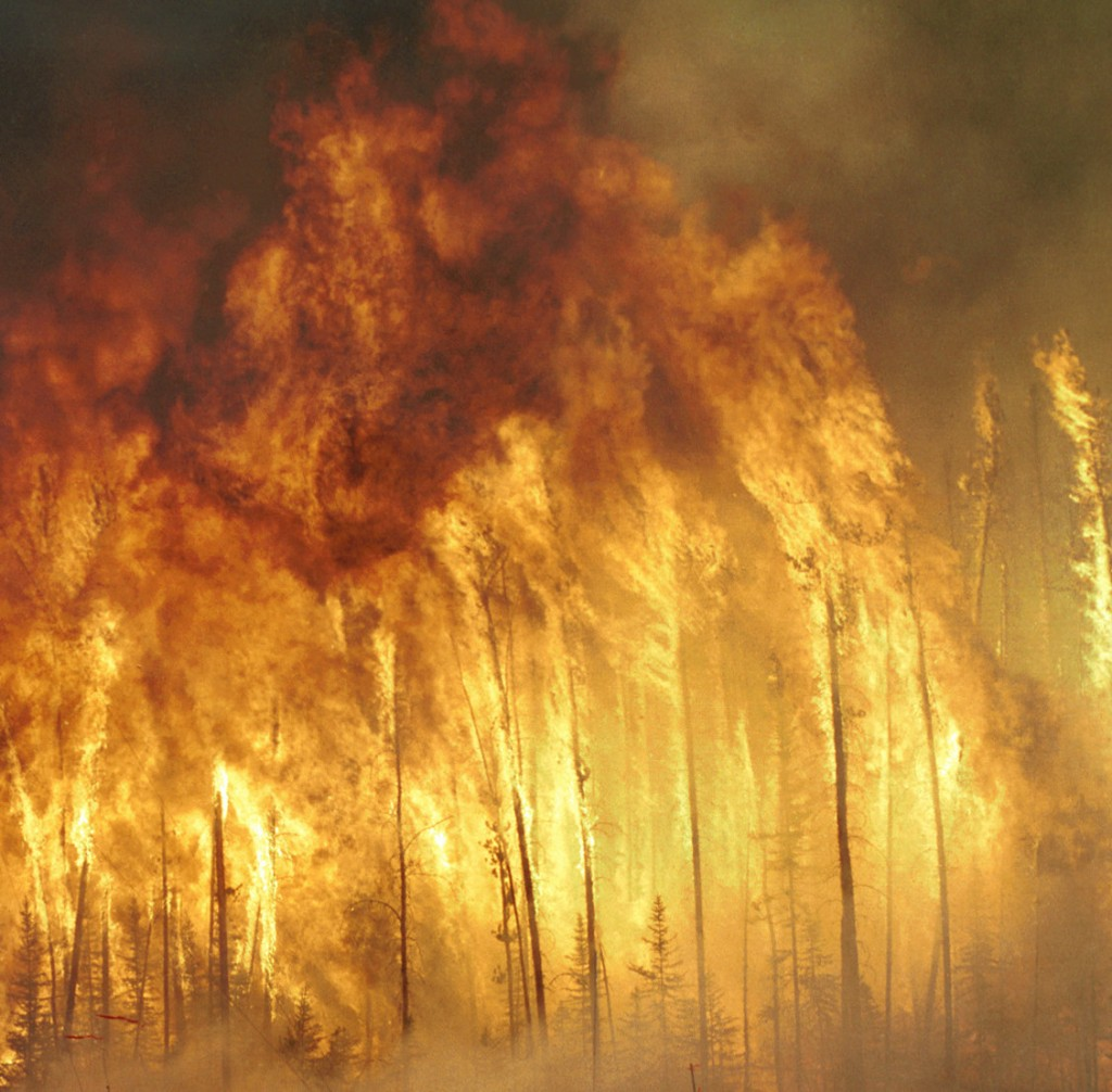 Canadian forest fire, cropped 2, from Wikipedia
